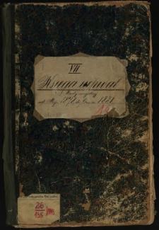 Księga uchwał Rady miejskiej od maja 1878 do czerwca 1881. T. VII