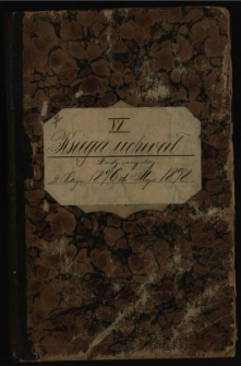 Księga uchwał Rady miejskiej od lutego 1876 do maja 1878. T.VI